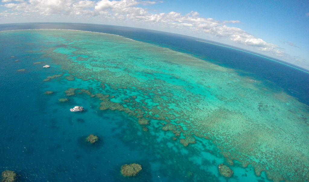 aerial-view-great-barrier-reef-cairns