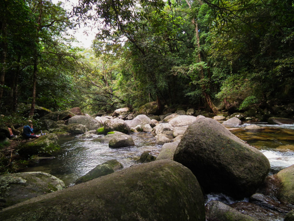 mossman-gorge-queensland